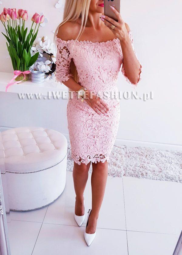 Sukienka Cavali Puder